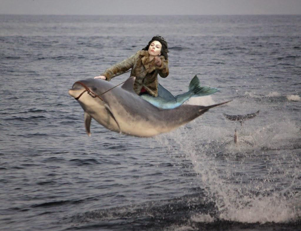 Scarlett Johansson leva tombo e a zoação começa!