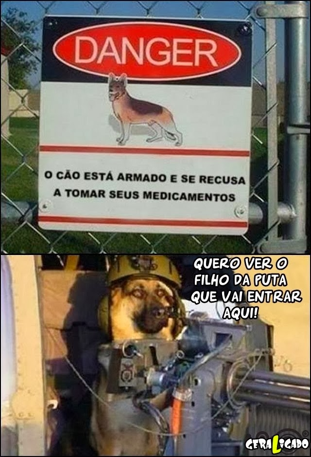 Cuidado com esse cão!