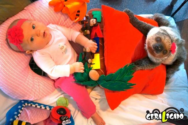 Uma amizade engraçada entre bebê e preguiça1