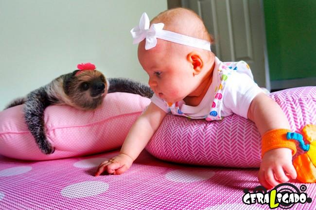 Uma amizade engraçada entre bebê e preguiça5