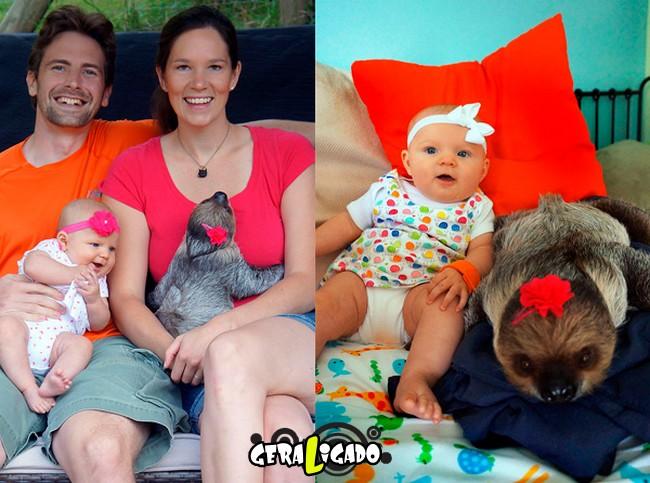 Uma amizade engraçada entre bebê e preguiça6