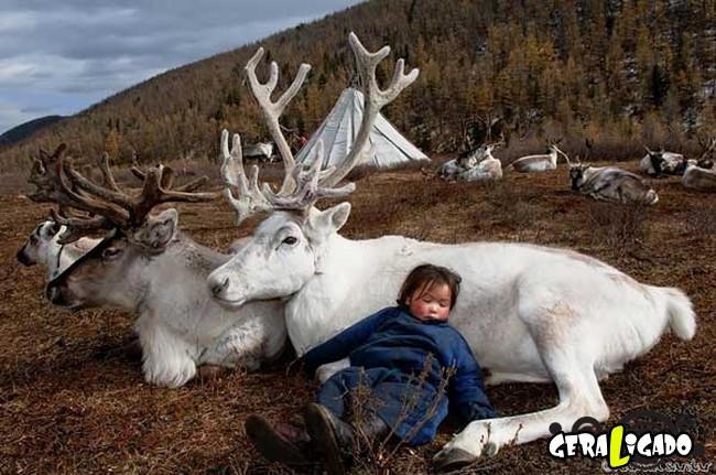O cotidiano de uma tribo nômade da Mongólia