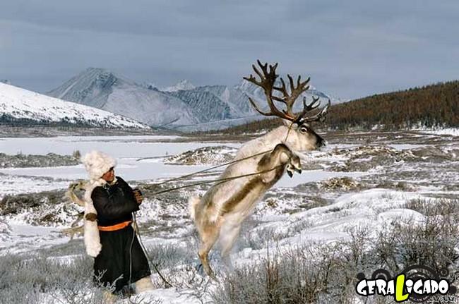 O cotidiano de uma tribo nômade da Mongólia2