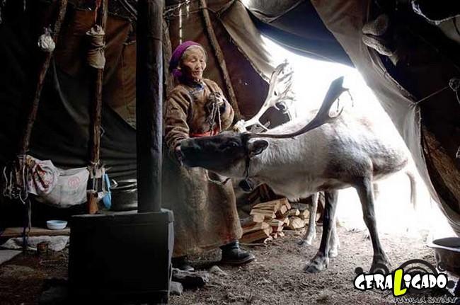 O cotidiano de uma tribo nômade da Mongólia3
