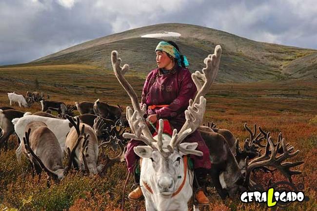 O cotidiano de uma tribo nômade da Mongólia4