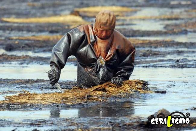 Imagens de cortar o coração mostram a devastação humana ao meio ambiente10