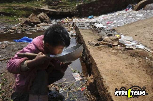 Imagens de cortar o coração mostram a devastação humana ao meio ambiente16