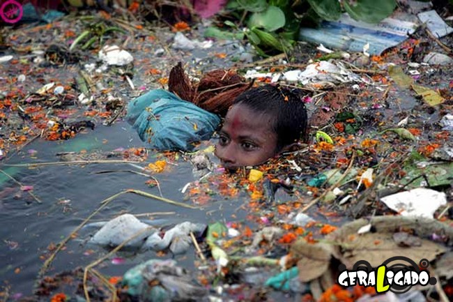 Imagens de cortar o coração mostram a devastação humana ao meio ambiente17