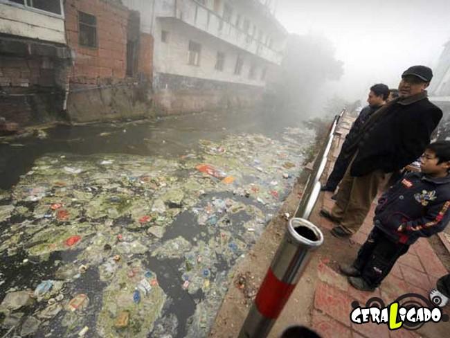 Imagens de cortar o coração mostram a devastação humana ao meio ambiente28