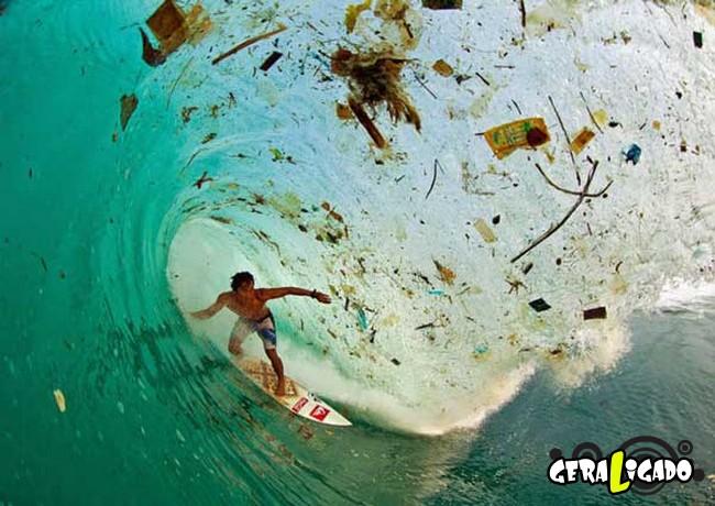 Imagens de cortar o coração mostram a devastação humana ao meio ambiente4