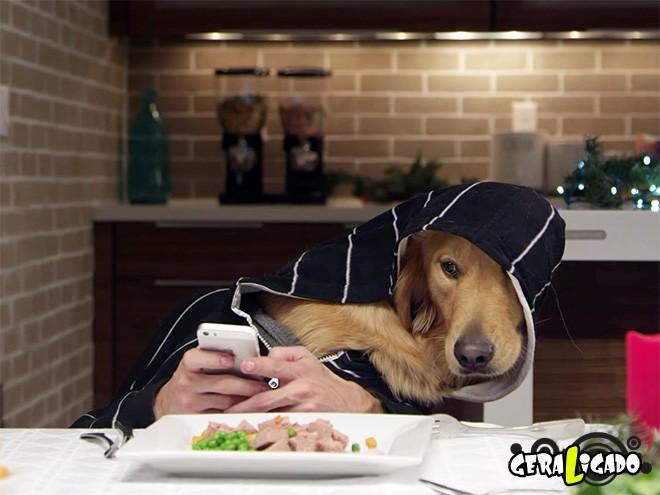 E se cães tivessem braços1