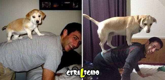 'Antes e depois' muito legais de donos e seus animais de estimação2