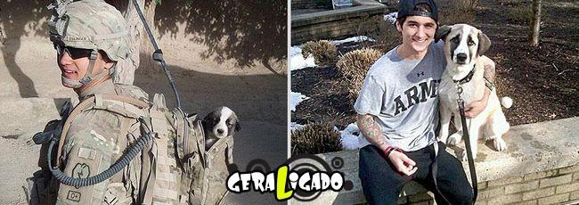 'Antes e depois' muito legais de donos e seus animais de estimação8