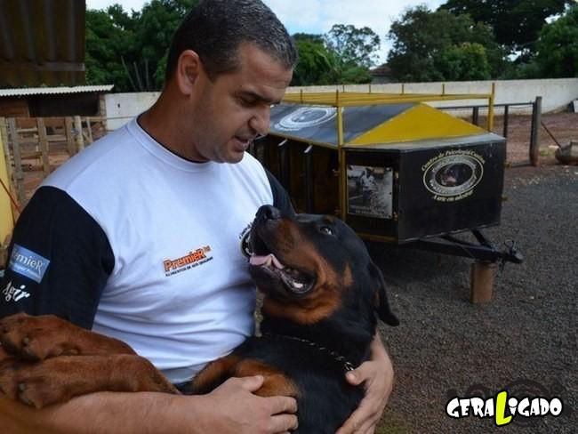 18 histórias que realmente te darão orgulho de ser brasileiro12