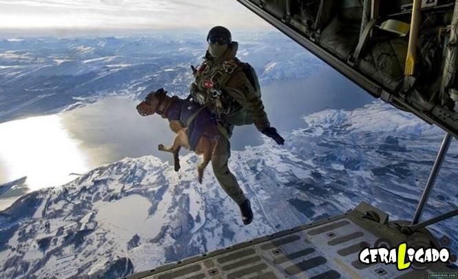 40 Fotos militares tiradas no momento certo29