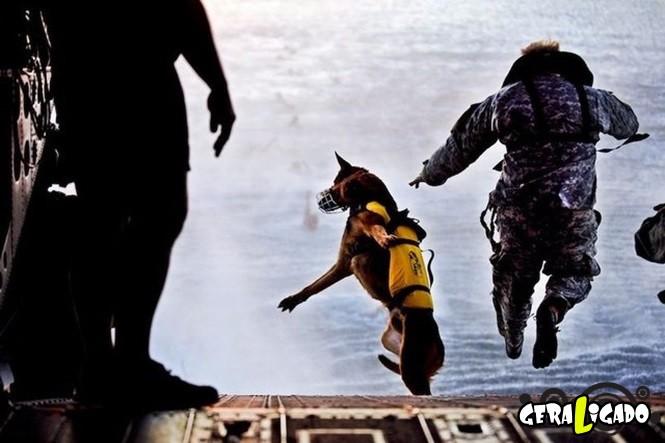40 Fotos militares tiradas no momento certo30