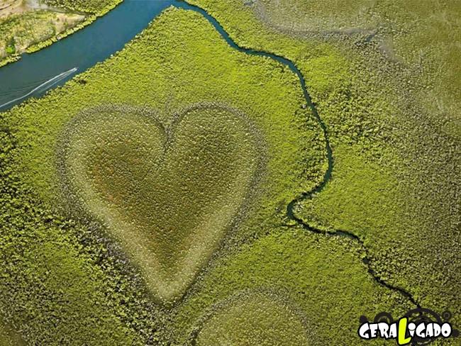 Tem formato de coração, e está na natureza..7