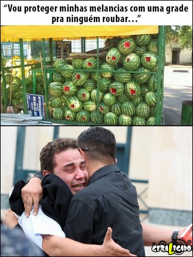 4 Não funcionou muito bem proteger as melancias