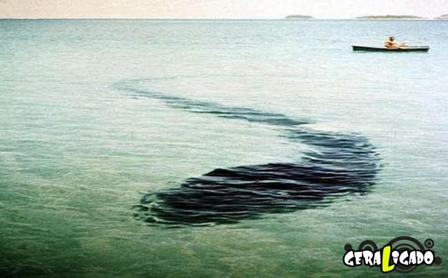 Top 7 - Imagens com misteriosos detalhes pra lá de inexplicáveis!4