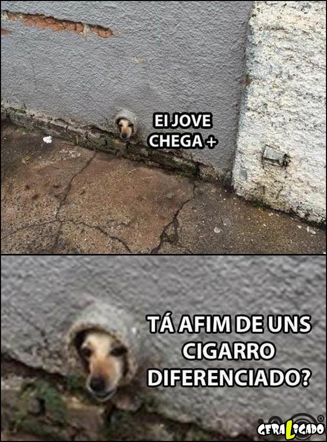 2 Cigarro diferenciado