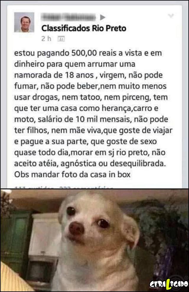 4 Classificados Rio Preto