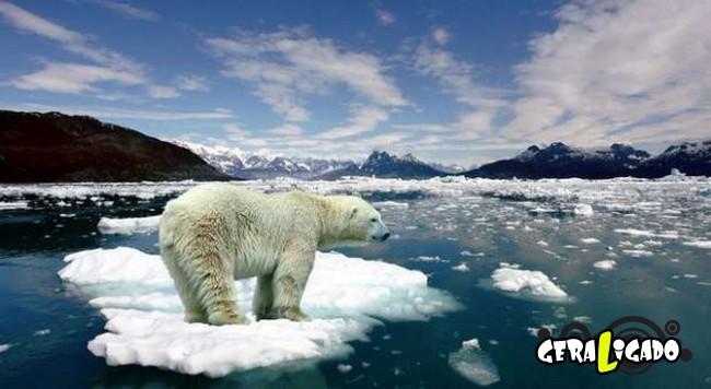 7 sinais de que o ser humano está perto da extinção3
