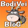BodiVeiBlog