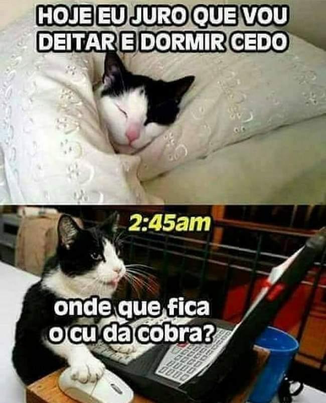 Dormir cedo é para os fracos