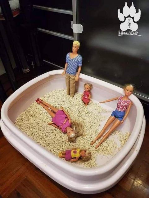 Mãe tô Levando as Barbies pra praia.1