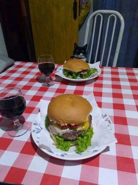 Jantar romântico com a gata