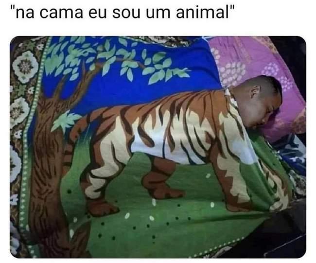 Na cama eu sou um animal