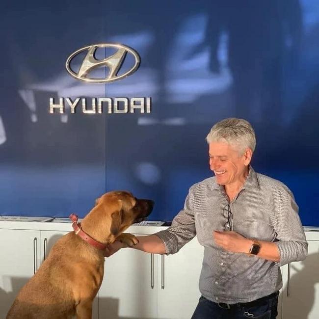 Uma concessionária da Hyundai no ES, adotou um cão!3