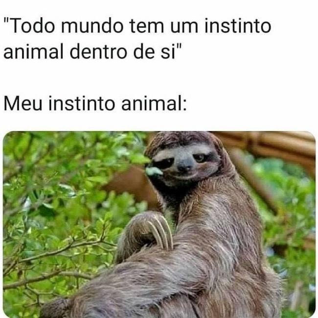 Meu instindo animal