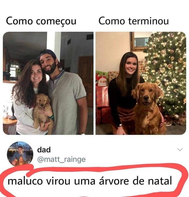 Só o cão foi leal