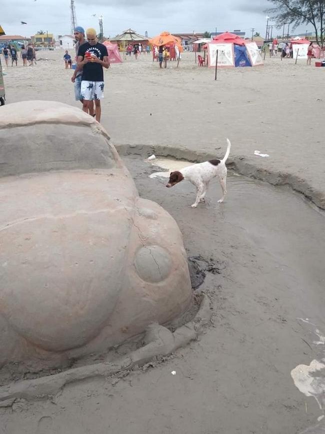 Escultura de areia na ilha comprida, O cachorro não perdeu tempo!
