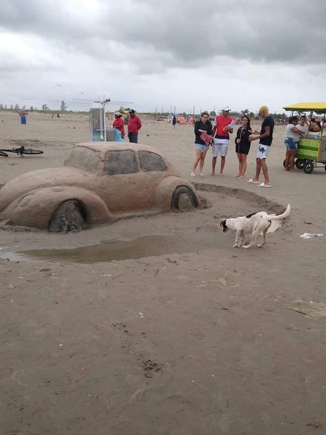 Escultura de areia na ilha comprida, O cachorro não perdeu tempo!2