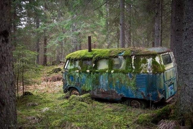 Um dia a natureza vai levar tudo de volta12