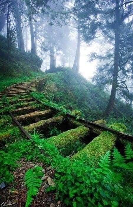Um dia a natureza vai levar tudo de volta14